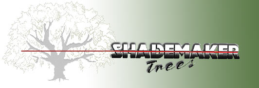 Shademaker Logo
